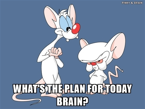 whats-the-plan-for-today-brain